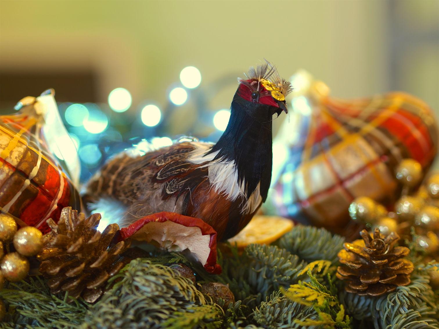 2017_12_21_Weihnachtsgruß_web.jpg
